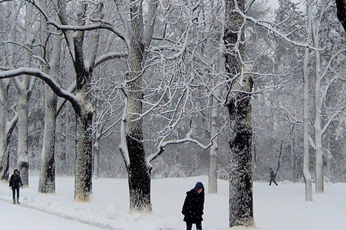 ropa-termica-para-invierno1